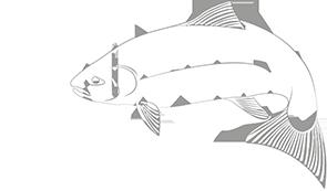 BioFish